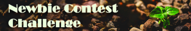 Banner For Newbie Contest
