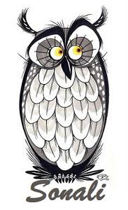 Owl Signature