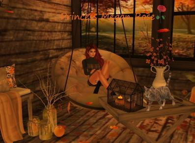 Fall image of me and my cat by Angel.