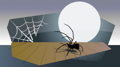 A Pixabay picture of a spider and web in the moonlight.