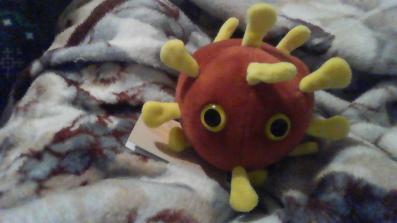 A picture of my stuffed corona