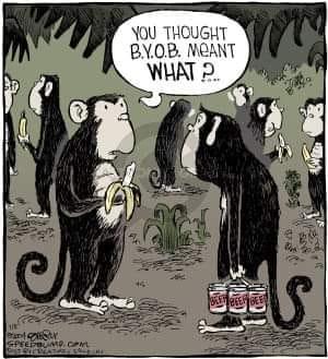 Monkey Comic Page