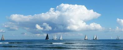Sailin' at Sea ~ Auction Image