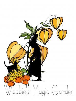 Witch's Garden image
