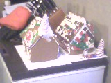 Some gingerbread houses that me and my brother decorated with candy