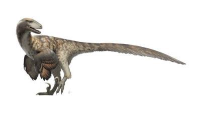 Illustration for Deinonychus Antirrhopus, short story for Weekly SCREAMS!!!